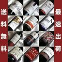 世界8か国から12品種を集めた赤ワイン12本セット!