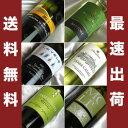 イタリア ビオロジックワイン