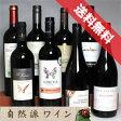 ■送料無料■自然派赤ワイン・ベーシック 飲み比べ8本セット 送料込み機関認証有機ワイン・有機栽培ワインも入っています!【赤ワインセット】【自然派ワイン ビオワイン 有機ワイン bio オーガニックワインセット】【楽天 通販 販売】