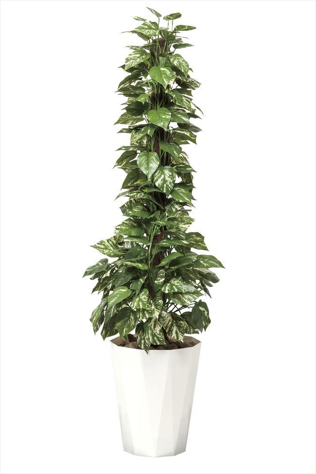 光触媒 光の楽園ポトス1.5m【インテリアグリーン 人工観葉植物】
