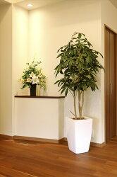 インテリアグリーン ギフト 造花 人工観葉植物 光触媒 光の楽園