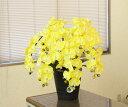 光触媒 胡蝶蘭光の楽園 胡蝶蘭 イエロー 7本立ち造花 コチョウラン 開店祝い・開業祝いなどに