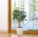 【送料無料】光触媒 観葉植物 光の楽園パキラ 高さ90cm【光触媒 人工観葉植物】