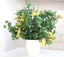 【送料無料】【光触媒人工植物 造花】ベビーリーフイエロー