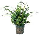 光触媒 光の楽園 クリアプランター9【完売しました】【フェイクグリーン 人工観葉植物 光触媒観葉植物】【RCP】