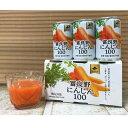 JAふらの 富良野にんじん100 (160g×30本) JAふらのにんじんジュース