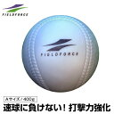 フィールドフォース FIELDFORCE野球 トレーニングボールインパクトパワーボール Aサイズ 400gFIMP-720A bb