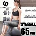 バランスボール 65cm SI VQGBN004 ジムボール...