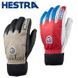 ヘストラ(HESTRA) スキーグローブ LEATHER WOOL 30800 <2014>