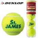 ダンロップ(DUNLOP) 硬式テニスボール4球×1セット セントジェームス STJAMESE4TIN