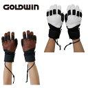 ゴールドウィン GOLDWINスキーグローブ メンズGLOVE グローブG1802P