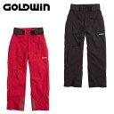 ゴールドウィン GOLDWINスキー メンズBright Pants ブライトパンツG31604P