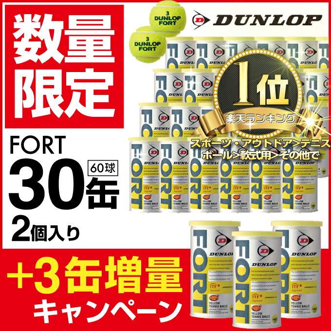 ダンロップ DUNLOP 硬式テニスボール フォート FORT 2球×1箱 30缶+3缶増量=33缶/66球 DFGYL2CS66