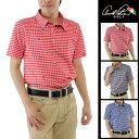 アーノルドパーマー arnold palmer ゴルフウェア メンズ チェックワッフルメッシュ半袖ポロシャツ AP220101G06
