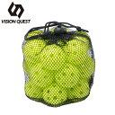 野球 トレーニング用品 ミニバッティング練習ボール20P VQ550411G12 ビジョンクエスト VISION QUEST