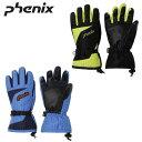 フェニックス Phenix スキー・スノーボードグローブ ジュニア Demonstration Boy's Gloves デモンストレーションボーイズグローブ PS7G8GL82