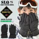 スキー スノーボード グローブ ジュニア ゴアテックス GORE GLOVE 8SL131701-01 エスエルキュー SLQ