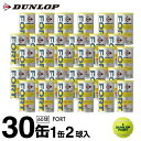 ダンロップ(DUNLOP) 硬式テニスボール フォート(FORT) 2球×30缶セット 数量限定【ボールバックプレゼント】