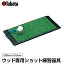 タバタ TABATAゴルフ 練習用 練習器具 トレーニング ...