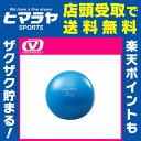 ビジョンクエスト VISION QUEST ウェルネス トレーニング器具 ウエイトボール 3kg 筋トレ フィットネス VQWEN014