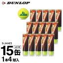 ダンロップ DUNLOP テニスボール セントジェームス 1箱 60球 4球×15缶セット STJAMESI