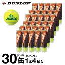 ダンロップ DUNLOP テニスボール セントジェームス12...