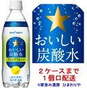 【サッポロ】おいしい炭酸水グレープフルーツ 500ml×24本