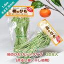 ショッピング干し柿 柿のひも カットタイプ 20本入(吊るし柿・干し柿用)太さ2.5mm 長さ1.5m