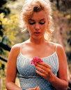 マリリン・モンロー/ポスター Marilyn Monroe Blue dress holding flower フレーム付