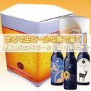 生ビールなBOX?!で届く★最高級火の谷ビール3種6本セット...