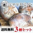 【送料無料】石窯パン3種セット【石窯焼き究極シンプルな自然パ...