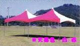活动,给聚会添上华!童话帐篷2间×4间(3.55m×7.07m)MT-2040帐篷?框架组套[イベント、パーティーに華を添えます!メルヘンテント 2間×4間(3.55m×7.07m) MT-2040 天幕?フレームセット]