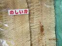 イカ いか スルメイカ 【のしいか 無添加 1枚‐90g】 レターパックで送料無料 お花見 母の日 父の日 お中元 お歳暮 ギフト