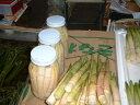 お歳暮・おせち料理・山菜・たけのこ・姫竹の子・天然タケノコ・常温保存 瓶詰め-400g前後05P03Dec16