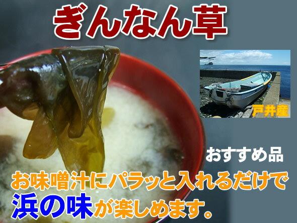ぎんなん草 コンブ【銀杏草 1kg  生銀杏草】 【送料無料】ギンナンソウ 海藻
