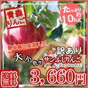 【予約】【送料無料】青森県産 訳あり サンふじりんご約 10...