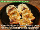 なにわのおつまみ餃子【ぎょうざ】【ギョーザ】【gyouza】