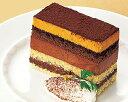 凍ったまま食べる!フローズンケーキ ショコラ