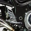 サンセイレーシング SANSEI RACING ジニック ZNICマルチステップ GSR750 ポリッシュ 0-6-ZB3703P