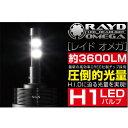 【メーカー在庫あり】 969920 RAYD LEDヘッドライトキット 自動車用 オメガ H1バルブ