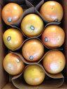 クラウンルビーグレープフルーツ1箱