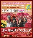 【母の日ギフト】空気を浄化するリーガースベゴニア 5号鉢 選べる11品種♪ 送料無料 鉢花 鉢植え