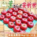 【セール】青森県産りんご【家庭消費用】葉とらずりんご「安祈世(あきよ)」18個〜30個入(約5kg前後)