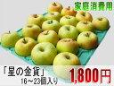 青森県産りんご「星の金貨」家庭消費用16〜23個入