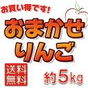 平成28年度青森県産りんご【家庭消費用】【送料無料】「おまかせりんご」約5kg前後品種・個数は秘密です!【訳あり】