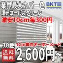 調光 遮光 ロールスクリーン 【30色】ブラインド 機能 高品質 業界最大 カラー カバー
