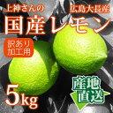 【産地直送】広島県産 レモン...