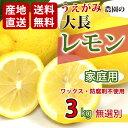 【送料無料】家庭用 国産 広島県 大長産 レモン 約3kg 防腐剤不使用 ノーワックス 皮まで食べられます サイズ無選別 うえがみ農園直送