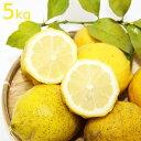 送料込み 農園直送 広島県産 レモン 約5kg サイズいろいろ 皮まで食べられます 国産レモン 広島県呉市豊島 竹川農園