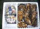 送料無料 産地直送 広島県産 生牡蠣 (むき身1kg+殻付き約10個セット) アミスイ かき小町 かき カキ 牡蛎 焼き牡蠣 かき鍋 カキフライ